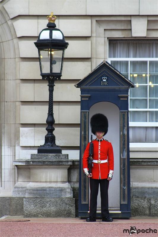 Cartoon Buckingham Palace BreakIn  The English Blog